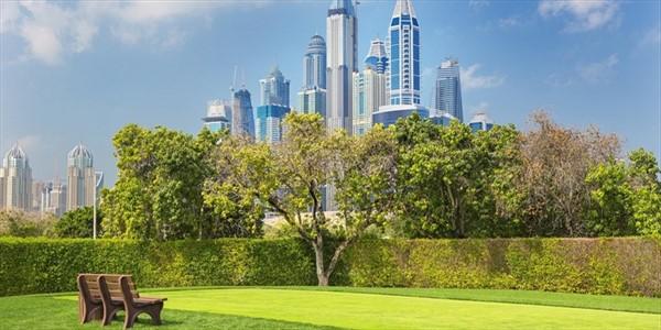 Vincenzo Cimini - Rivoluzione green a Dubai